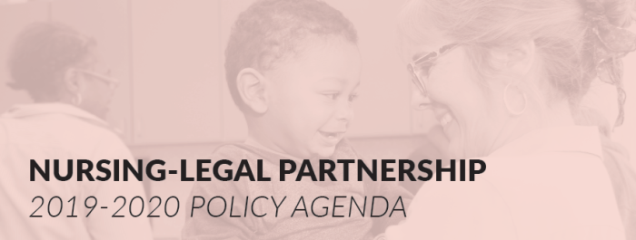 policy agenda img